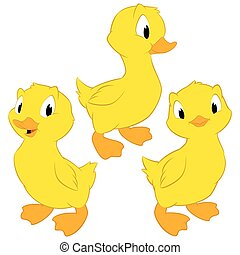 Cartoon Baby Ducks - Cartoon baby ducks. Isolated objects...