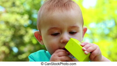 Adorable baby boy chewing building blocks on a sunny day
