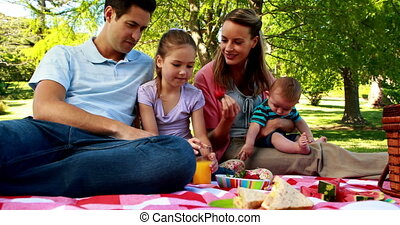 Happy family enjoying a picnic in t