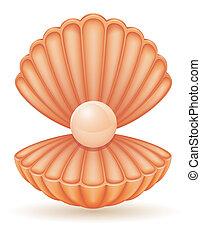 shell with pearl vector illustration isolated on white...