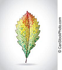 Autumn colorful leaf