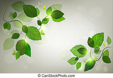 Summer Background With Leafs, Sunbeam And Butterflies