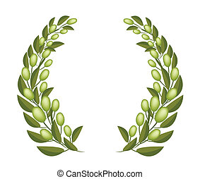 A Beautifu Olive Wreaths on White Background - Vector...