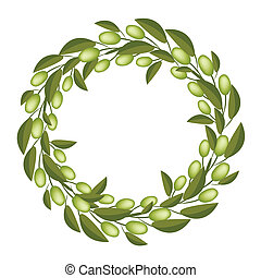 A Beautiful Olive Wreath or Olive Crown - Vector...