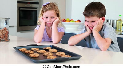 Siblings waiting for hot cookies to cool down at home in the...