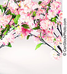 Photo of colorful sweet-smelling flowers