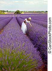 Young woman in white romantic dress with hat picking some lavender in lavender field, holding a bouquet of lavender, above her the sky. Long-shot.