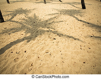 Coconut tree shadow on sand beach in hot summer