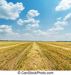 agriculture field after harvesting and clouds over it