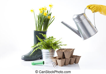 gardening and cultivation concept