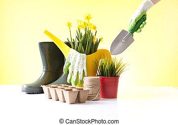 上水, 工具, 罐頭, 花園