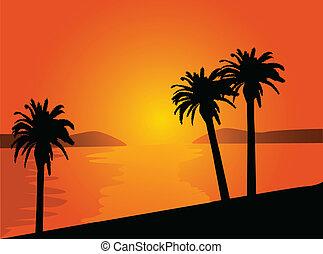 beach with palm trees at sunset