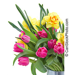 bouquet of pink tulips and yellow daffodils isolated on...