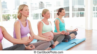 Pregnant women doing yoga in fitness studio at the gym