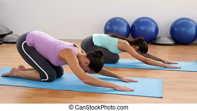 Fit women doing yoga together in studio at the gym