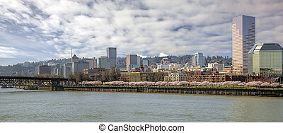 Cherry Blossoms with Portland City Skyline - Cherry Blossom...