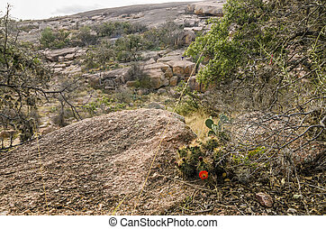 Enchanted Rock Texas - 13020 years ago (in 2011) on Midgard-...