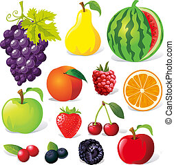 fruit illustration isolated