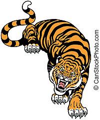 tigre, enojado