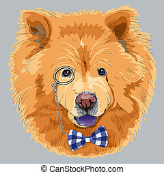 vector funny cartoon hipster chow-chow dog - hipster dog...