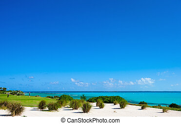 Golf course - Stunning view of a coastal golf course