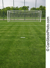 soccer field grass Goal at the stadium Soccer field with...