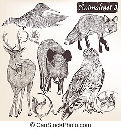 Collection of vector hand drawn detailed animals -...