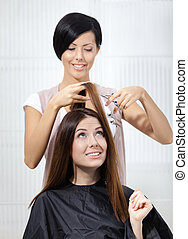 Hair stylist cuts hair of woman in hairdressing salon...