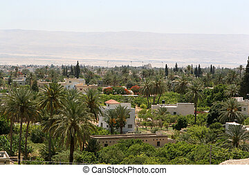 City Of Jericho, Israel - Surrounded by desert, palm trees...