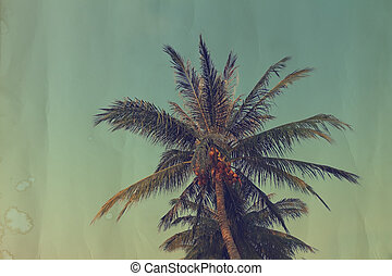 Vintage coconut palm tree