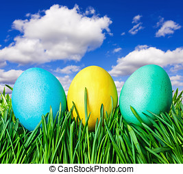 Easter eggs on grass - colored Easter eggs on grass