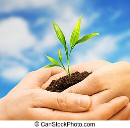 Human hands holding earth with plant sprout against blue sky