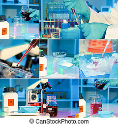 researchers work in modern scientific lab, collage...