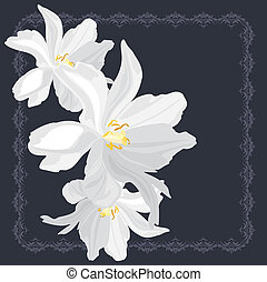 White flowers on the frame - White flowers on the ornamental...