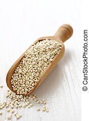 paletta, legno,  Quinoa, seme, grano, fondo, crudo, bianco