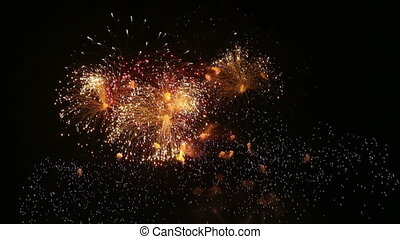 Multicolored fireworks salute with the black sky background...