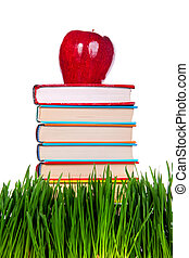 Books on the Grass - Pile of the Books on the Fresh Grass on...