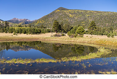 Lockett Meadow Flagstaff Arizona - the San Francisco Peaks...