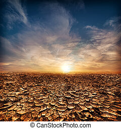 Global warming concept. Lonely drought cracked desert landscape under evening sunset sky