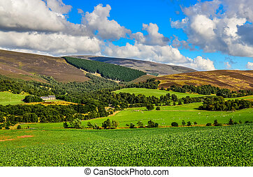 Scenic landscape view of Scottish highlands meadows