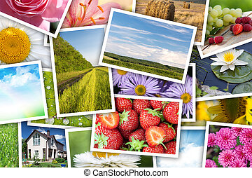 Stack of printed pictures collage - flowers, landscapes,...