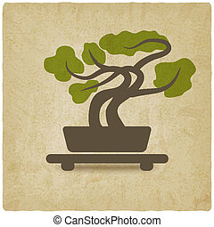 bonsai old background - vector illustration