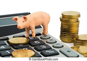 pig and calculators - a pig and a calculator as a symbol...