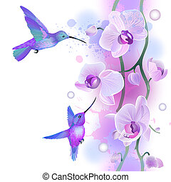Seamless ornament with orchids and humming birds - Vector...