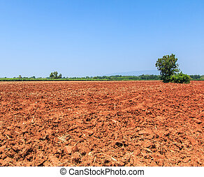 Land with soil preparation newly plowed field ready for new...