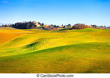 Tuscany, Crete Senesi country landscape, Italy, Europe. Rolling Hills, green fields with shadows and sunlight, blue sky partially cloudy and a farm with cypress trees in a row.