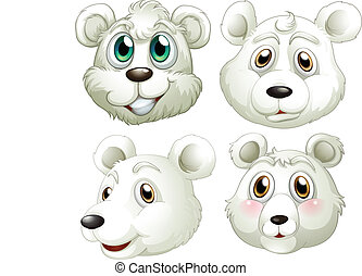 Heads of polar bears - Illustration of the heads of polar...