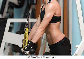 Triceps Workout - Beautiful Fit Woman Exercise Triceps In...