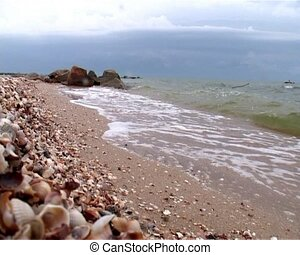 sea coast with shells and small soft waves
