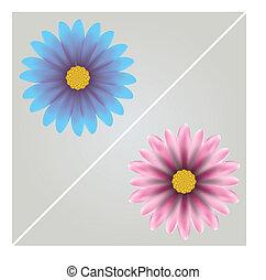 Vector  flowers .